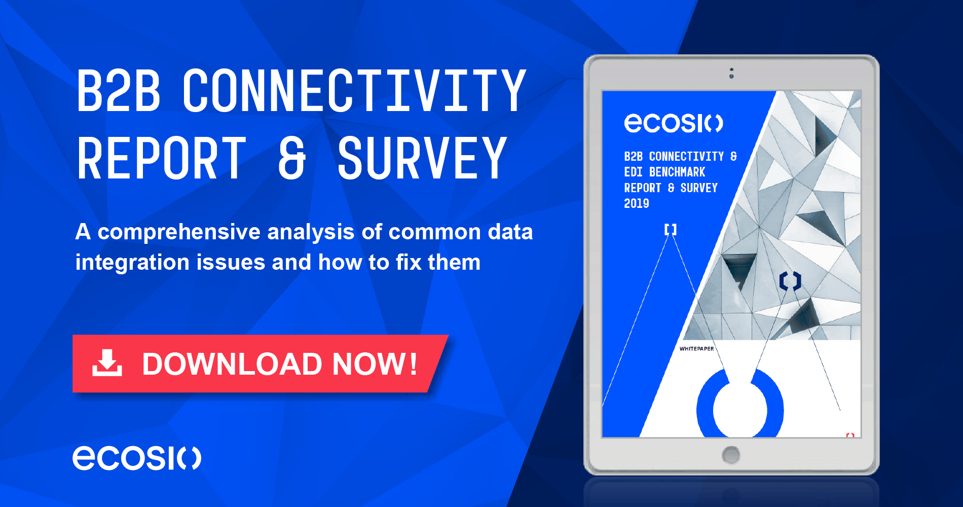 White Paper - B2B Connectivity and EDI Benchmark Report