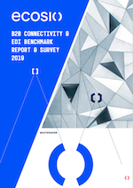B2B Connectivity White Paper Preview
